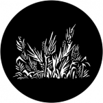 Standardstahlgobo Rosco Grasses 78039